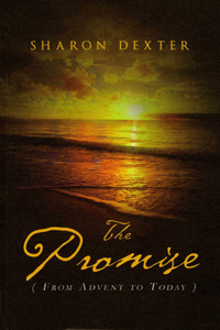 the promise book cover small